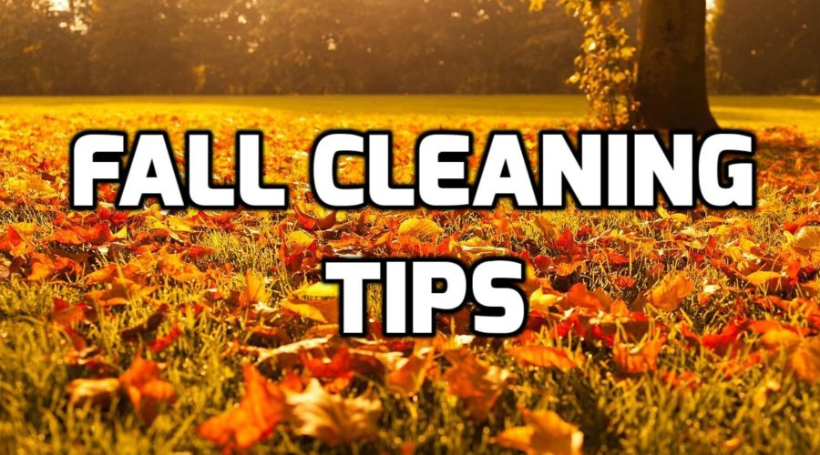 8 Amazing Fall Cleaning Tips