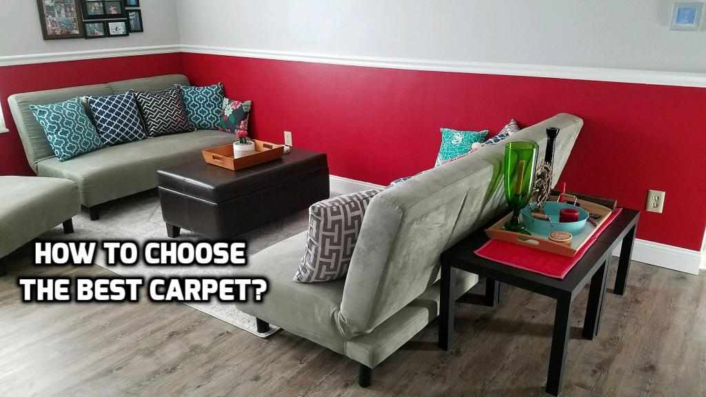 Best Home Carpet Shooer 28 Images Living Room Great