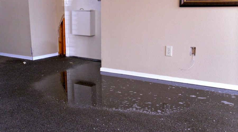 What is Emergency Carpet Cleaning and Why Would You Ever Need It?