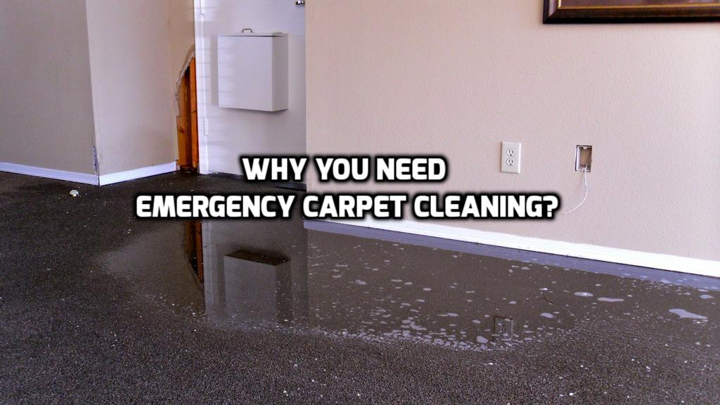 What Is Emergency Carpet Cleaning And Why Would You Ever